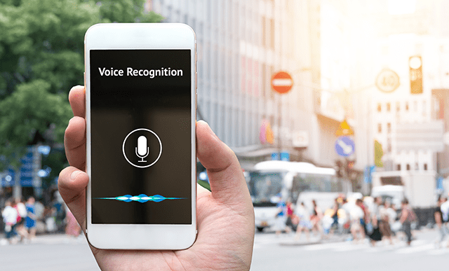 Website for Voice Search